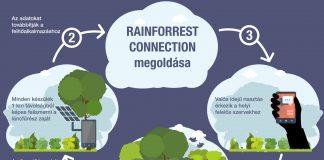 A régi okostelefonok és a legújabb technológiák kombinációjával harcolhat az emberiség az illegális esőerdő-irtások ellen.